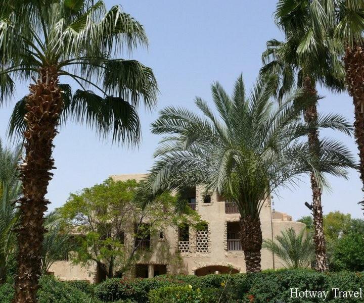 Туры в Иорданию Мертвое море пальмы