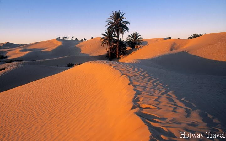 Тури в апреле в Тунис сахара
