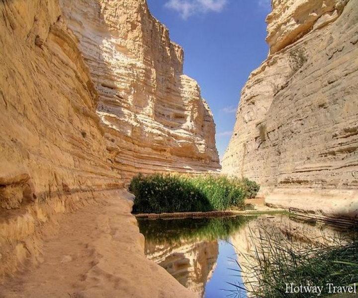 Туры в Израиль в апреле Негев