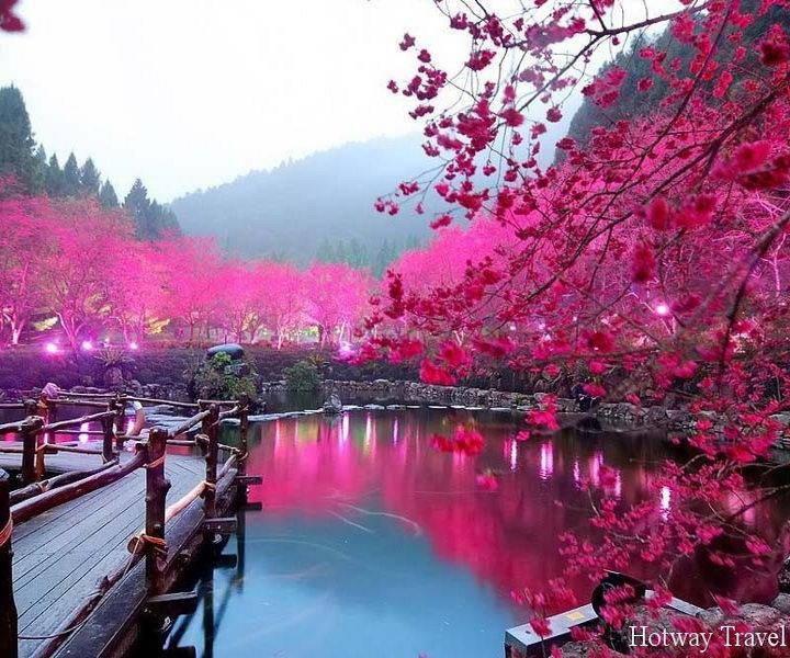 Туры в Китай в апреле тайвань
