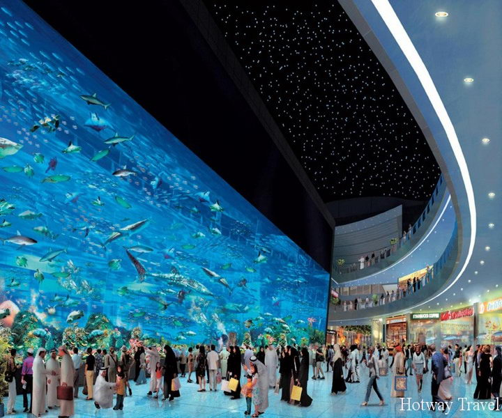 Туры в ОАЭ в апреле аквариум