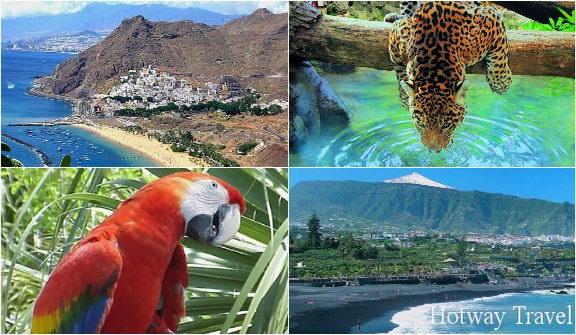 Отдых на Канарские островах в июле главная 1