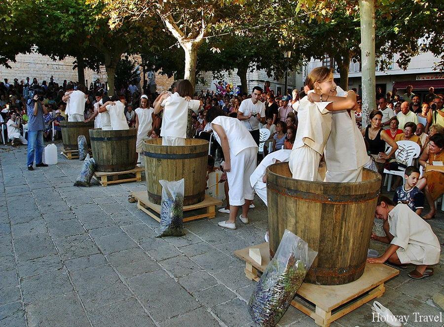 Отдых в Греции в сентябре виногорад