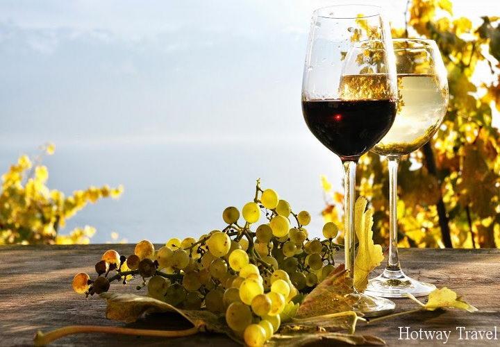Отдых в сентябре 2015 во Франции вино
