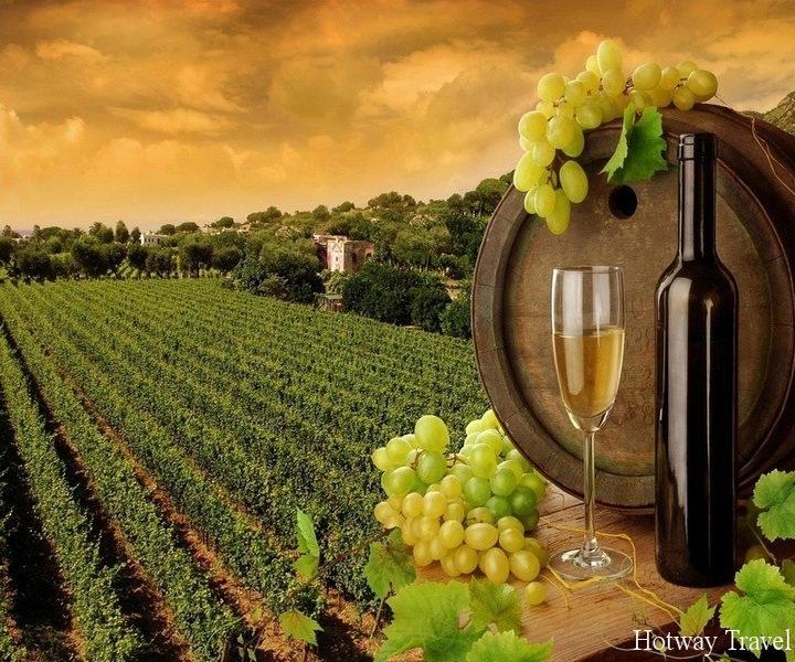 Отдых в сентябре 2015 во Франции вино1