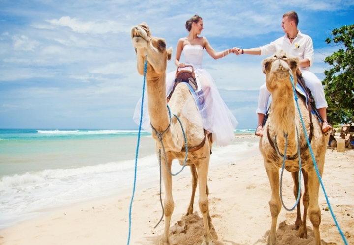 Туры из Житомира в Египет в феврале 4