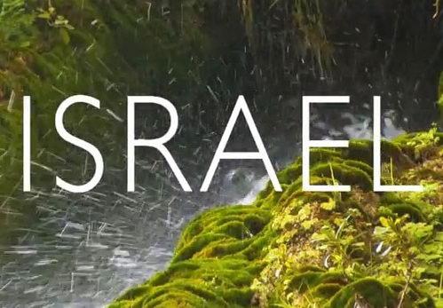 Туры из Житомира в Израиль в январе