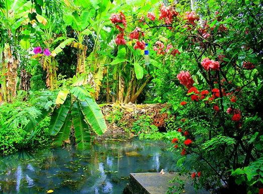 Туры из Житомира в Таиланд природа
