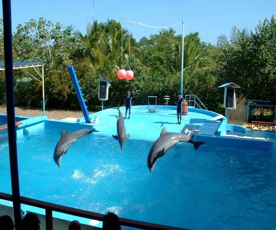 Туры из Житомира в Доминикану в феврале 4