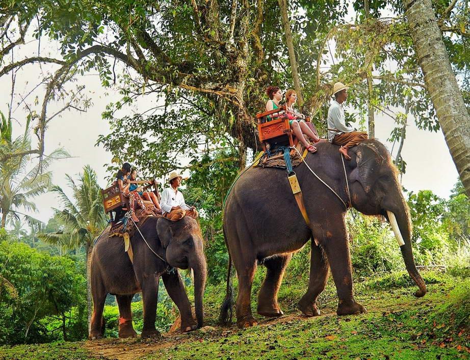 Туры из Житомира в феврале на Бали 52