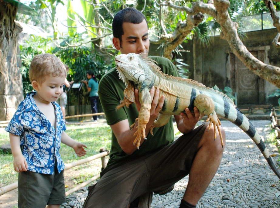 Туры из Житомира в феврале на Бали 90