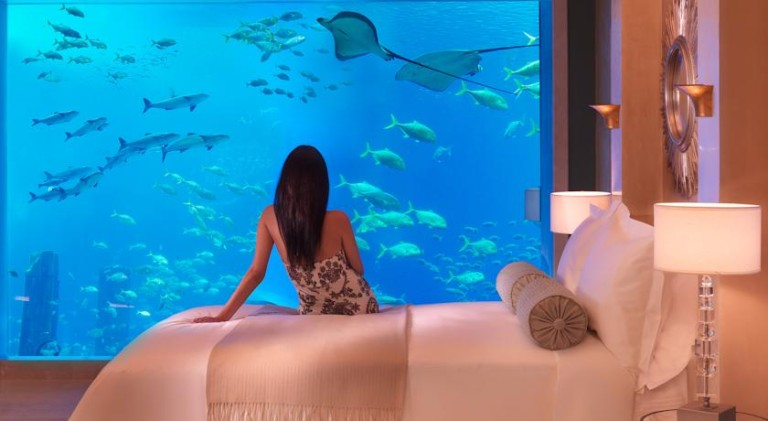туры из Житомира в отель Atlantis The Palm 6