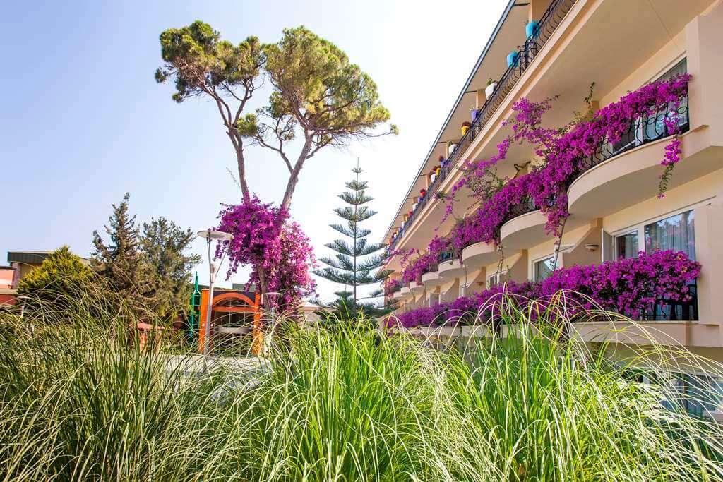 Ухоженные, обрезанные от сухостоя, цветущие густо-лиловым лианы заплели своим цветом все балконы клубного дома и бунгало.